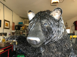 The Bear- in 16,000 Nails