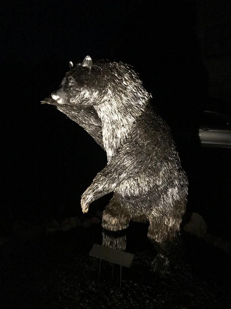 BearNite1.jpg