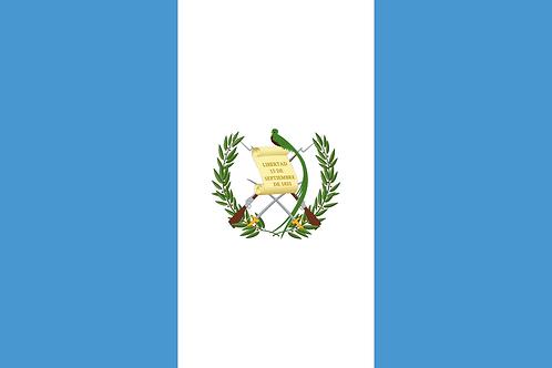 グアテマラ パチュージ農園/150g・300g