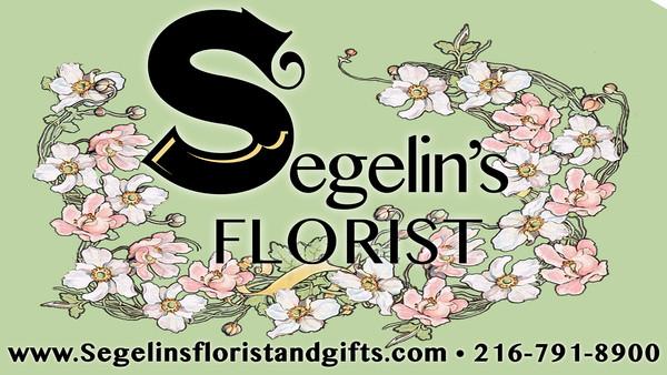 Segelins TV inhouse 08 2018(3).jpg