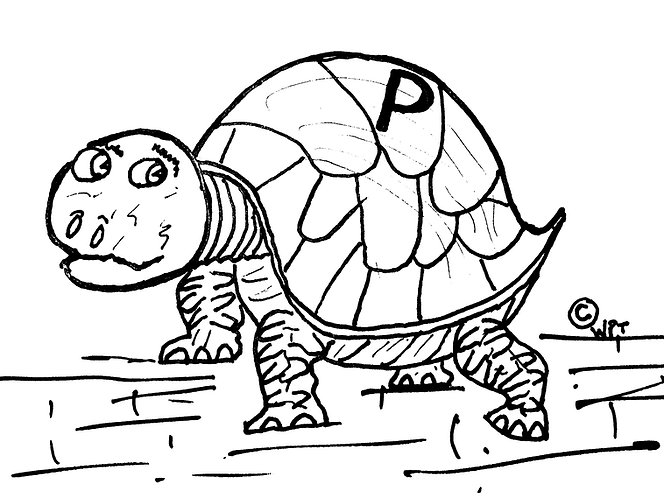 The Adventures of Peter the Tortoise