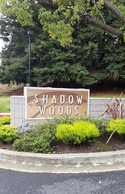 645 Canyon Shadow Woods1