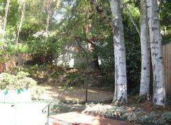 2836 25th Ave. Backyard