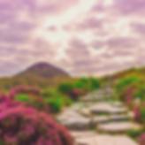 voyage initiatique Irlande la voix des étoiles julie legeaye