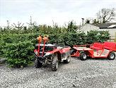 Grove House Christmas Tree Farm