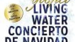 LIVING WATER VUELVE A LA GRAN VÍA POR NAVIDAD