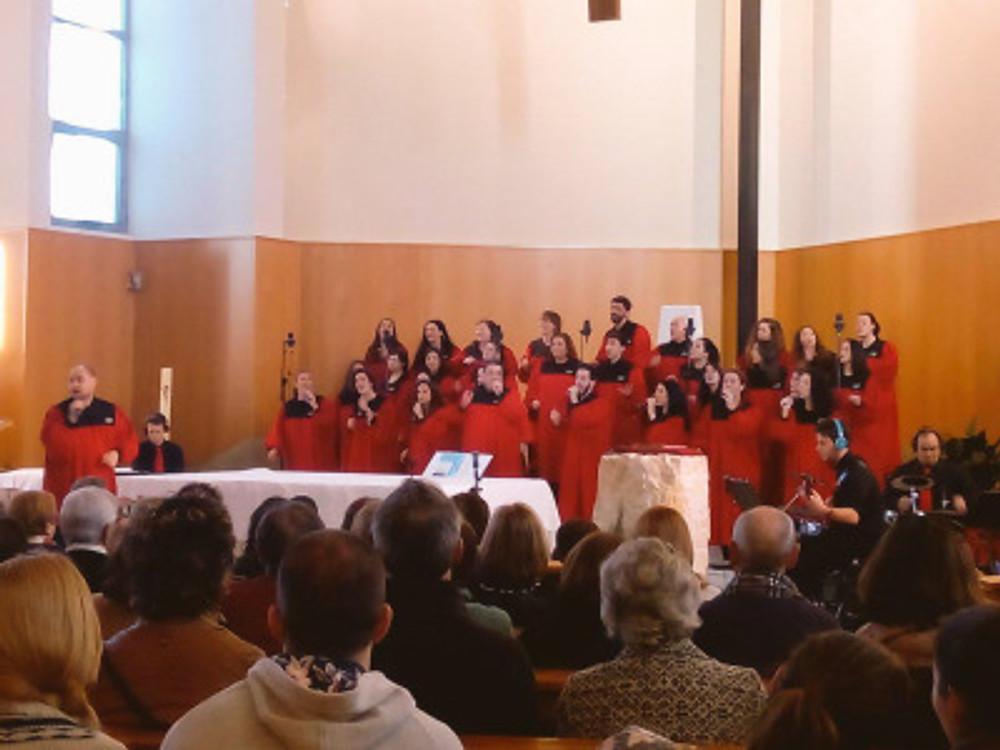 alzira 2015 valencia (7)