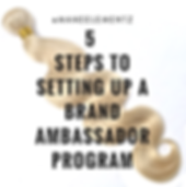 5 steps to brand ambassador.png
