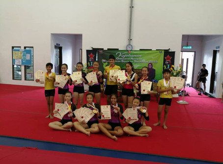 Outstanding Achievements at Artistic Gymnastics MSSS 2019
