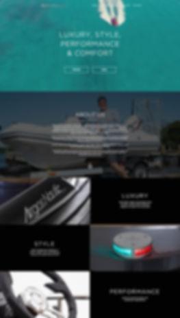 argos website.jpg