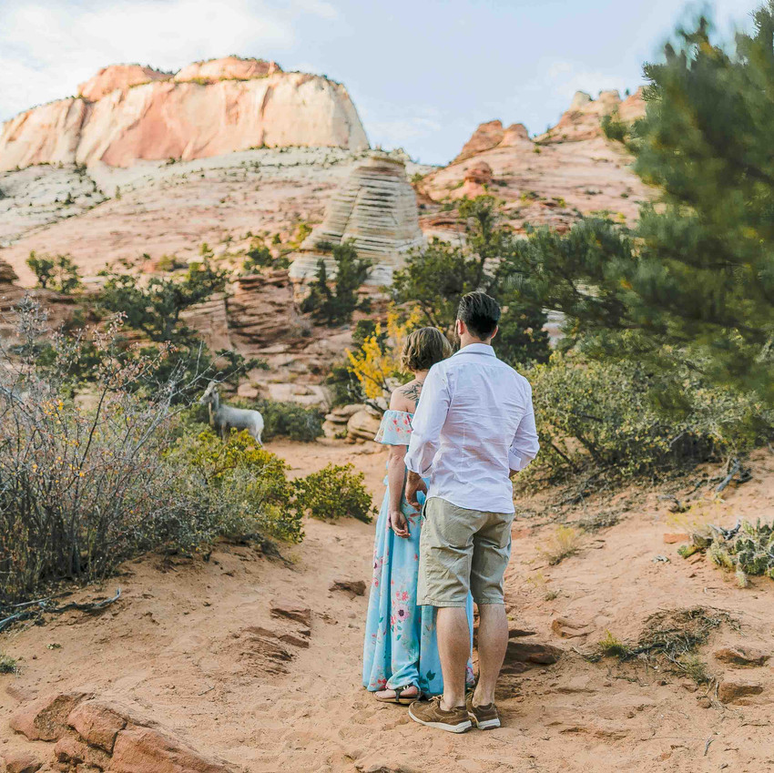 Vow Renewal in Zion National Park