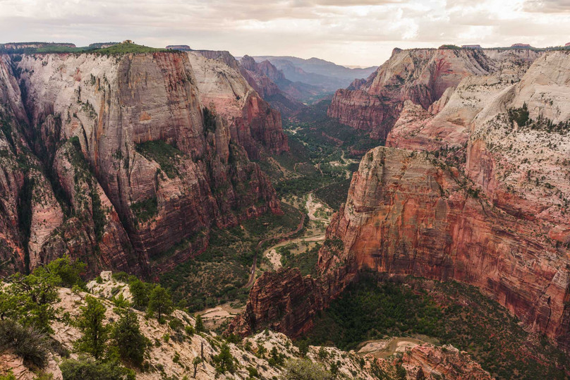 Hiking East Mesa Trail To Observation Point - Zion National Park