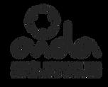 LogoAidaNuevoGris.png