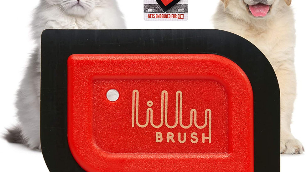 Lily Brush Dog Hair Remover