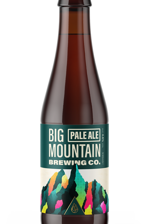 Bière PALE ALE 33cl - Big Mountain
