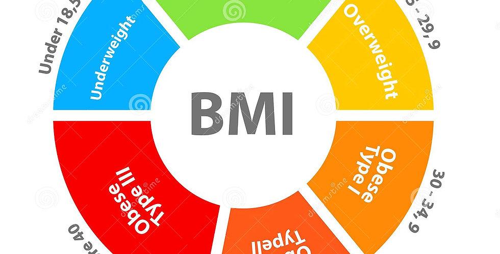 BTEC IT Unit 5 Exemplar Solution The BMI Tracker