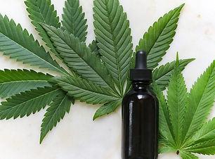 1. cannabis.jpg