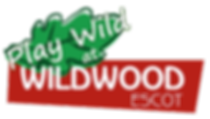 play_wild_logo_03.png