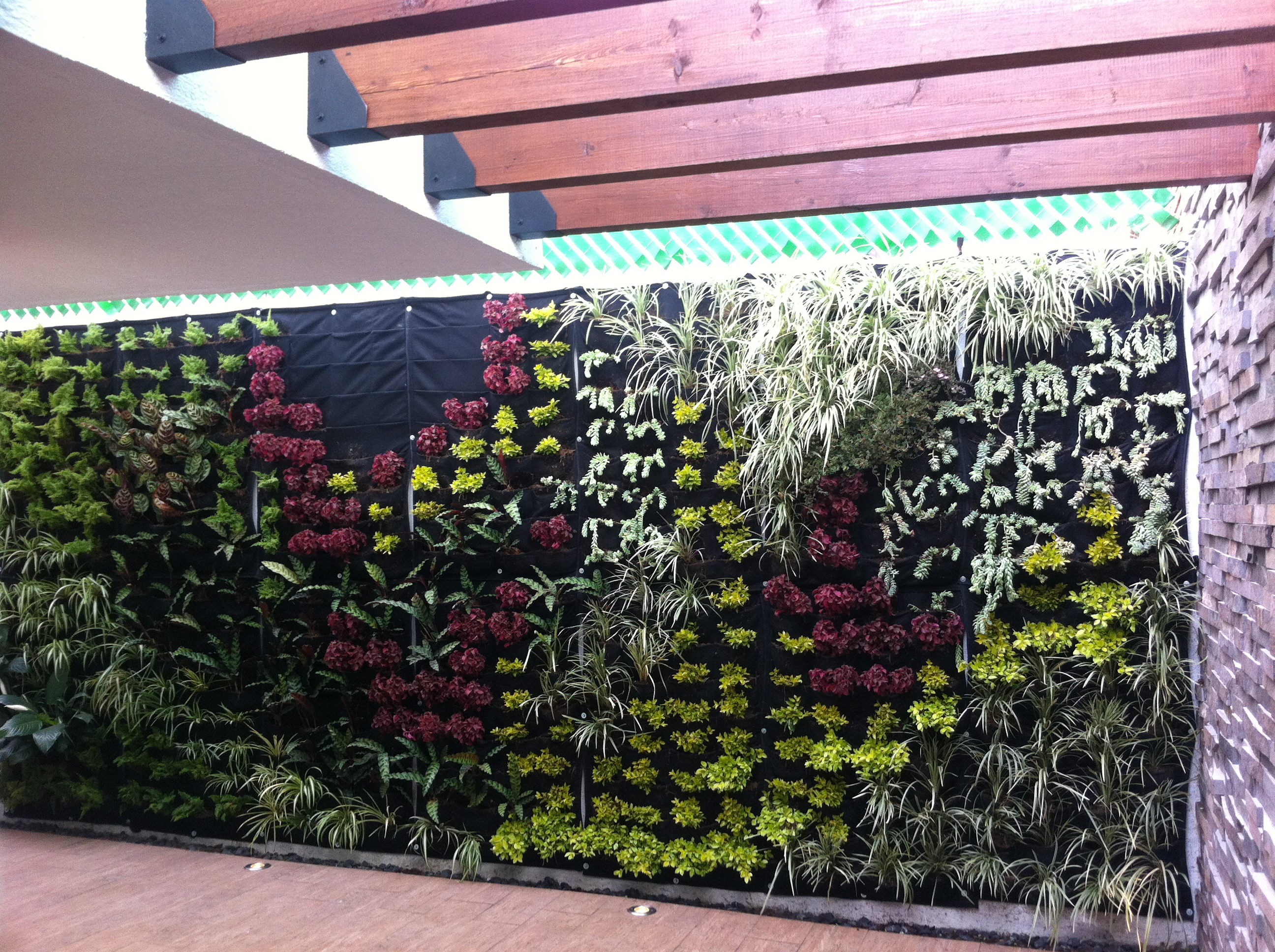 KCiRE-living wall