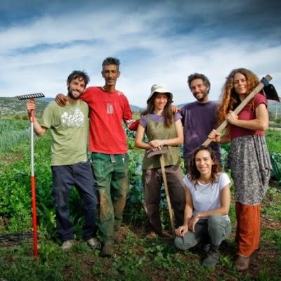 Hukuk pioneers