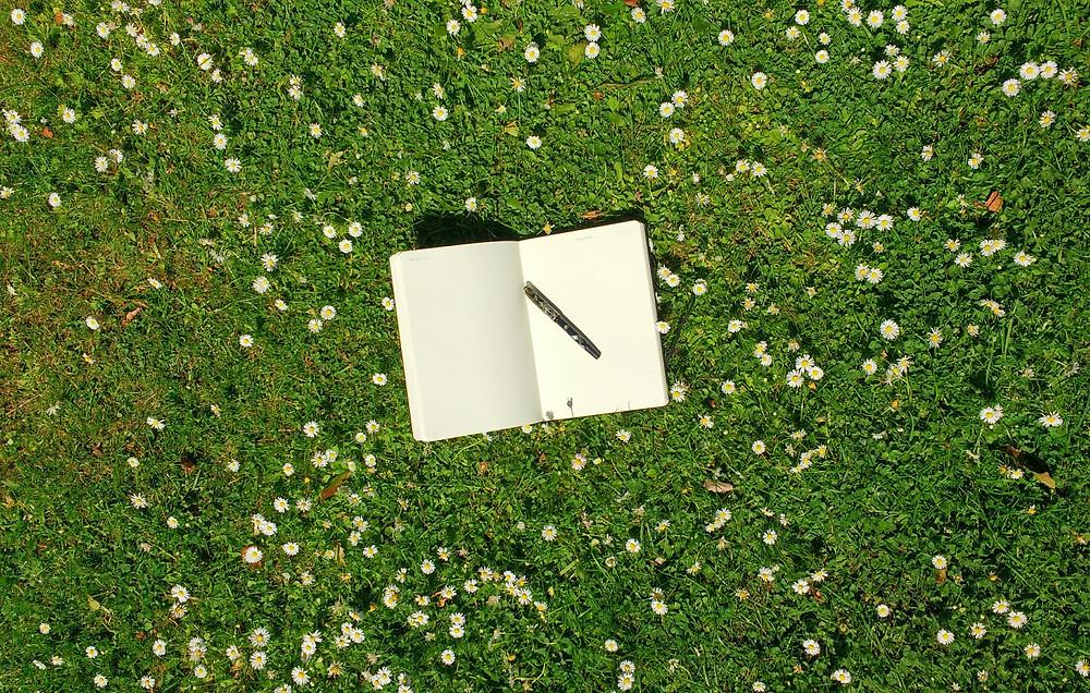 schrift en pen in gras met madeliefjes