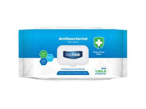 Antibakteriální vlhčené ubrousky 100ks (16x18cm)