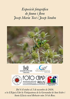 109 Exp. fauna i flora_13376.JPG