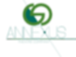 annexus logo2(1).png
