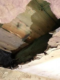 Floorboard Rot.jpg