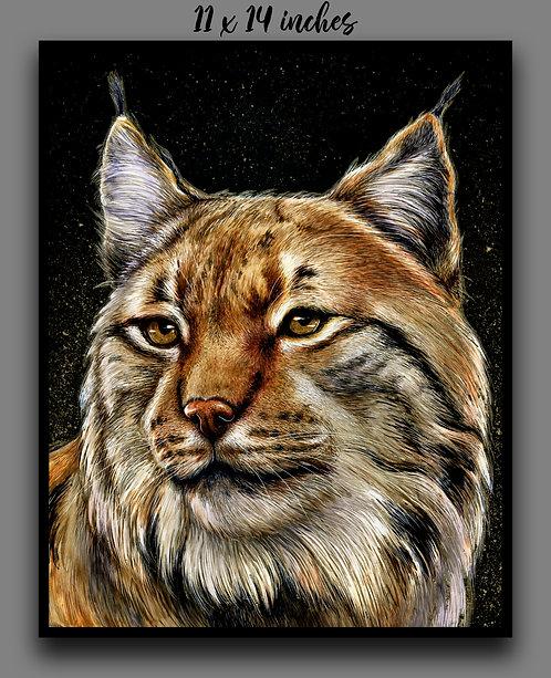 'Lynx' Signed Print - PREORDER