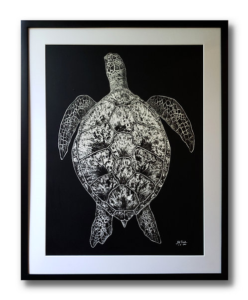 "'Sea Turtle' Original Drawing, 18"" x 24"""