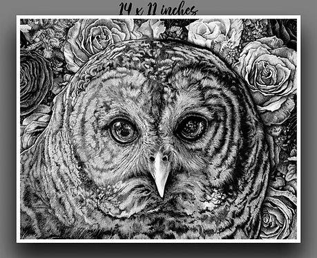 """Hoot Owl"" Signed Print"