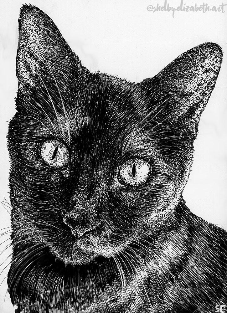 Roxy Portrait