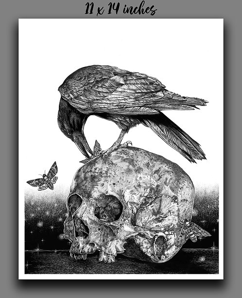'The Raven's Feast' Signed Print