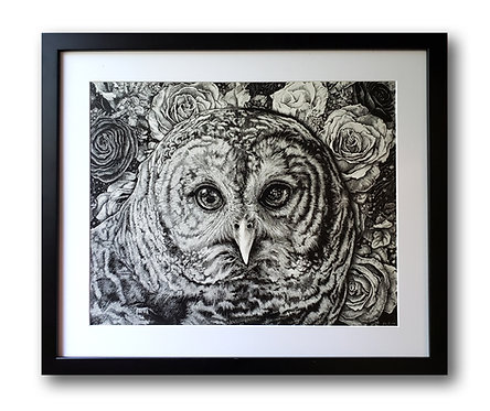 "'Hoot Owl' Original Drawing, 16"" x 20"""