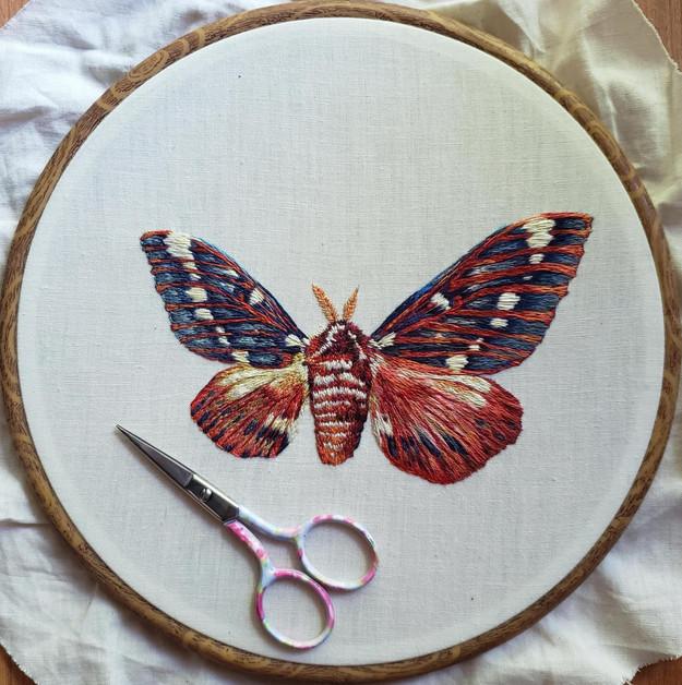 Custom Asymmetrical Moth, Handmade Embrodery