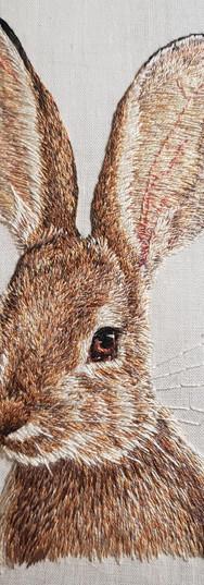 bunny-embroidery.jpg