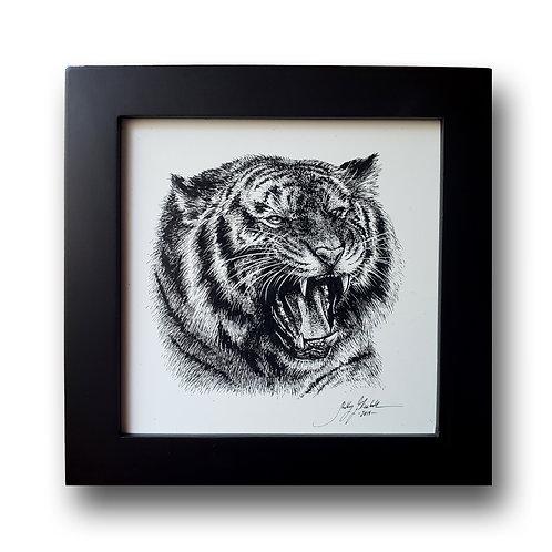 "'Roaring Tiger' Original Drawing, 5"" x 5"""