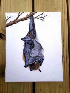 Sleeping Bat, Handmade Embroidery