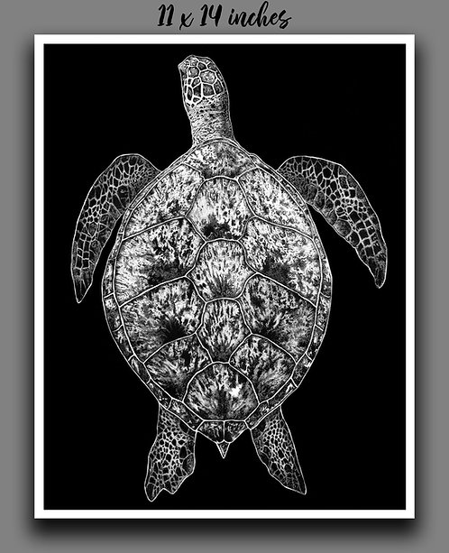 """Sea Turtle"" Signed Print"
