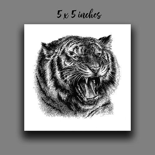 'Roaring Tiger' Signed Print