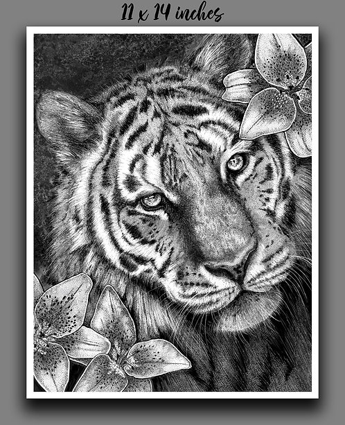 """Tiger in Lilies"" Signed Print"
