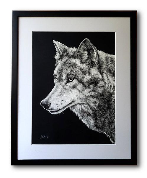 "'Grey Wolf' Original Drawing, 12"" x 16"""