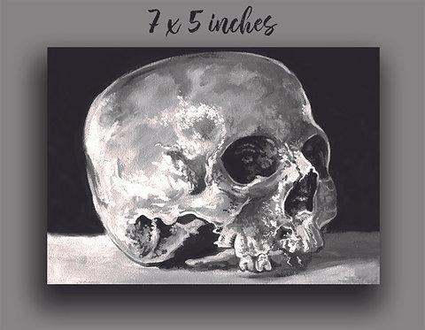 """""""Skull Still-Life"""" Print"""