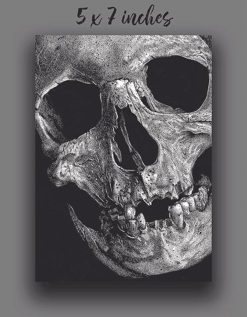 """Skull No. 3"" Print"