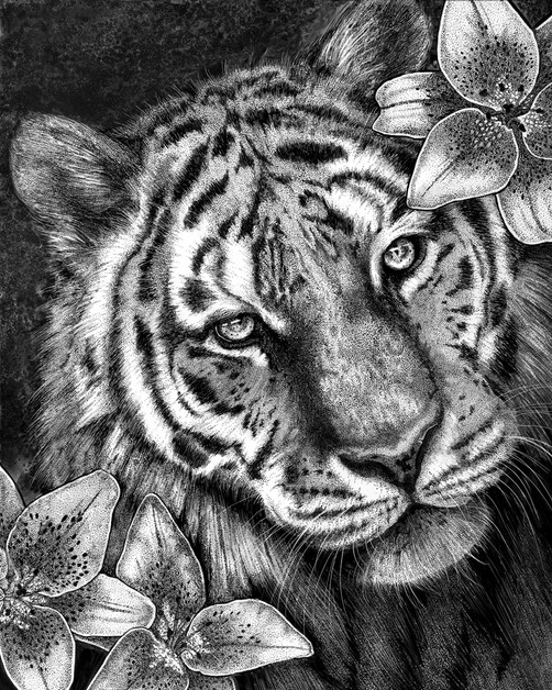 Tiger in Lilies