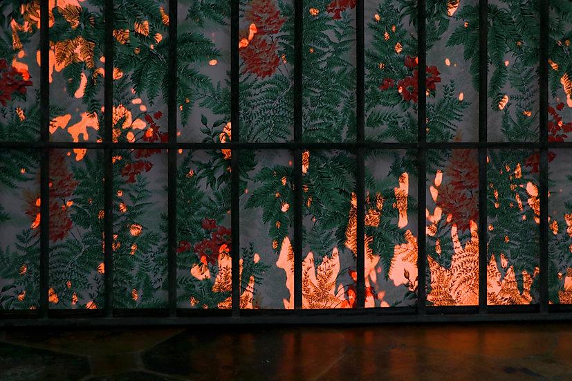 ventana2.jpg