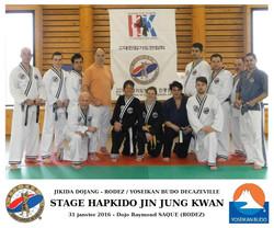 Hapkido JJK - Yoseikan Budo