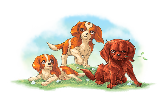 Ollie, Olive and Red; 3 main characters from the tails of Ae'tann