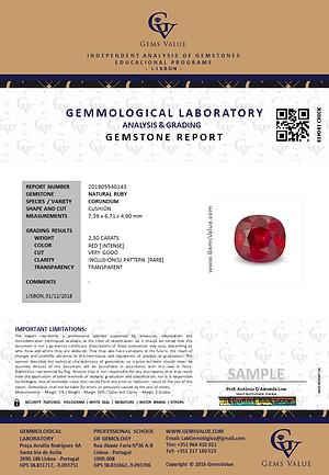 GEMSTONE REPORT.png